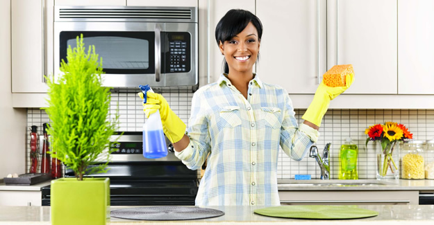 Cleaning Tips to Keep Pests Away from Your Home
